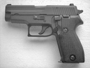 Sig Saier P225